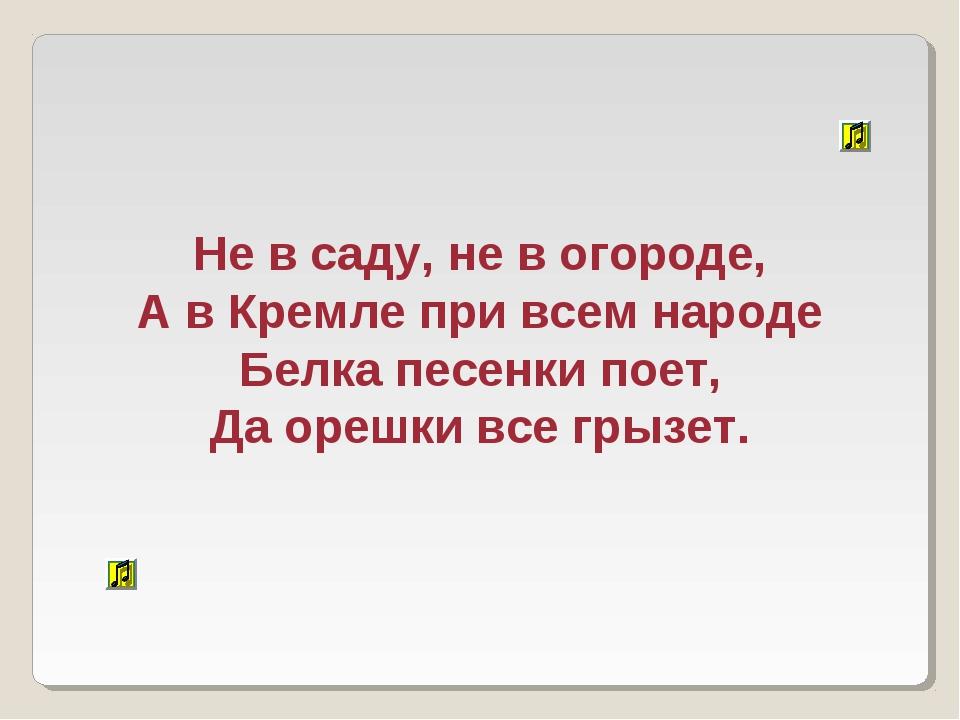 Не в саду, не в огороде, А в Кремле при всем народе Белка песенки поет, Да ор...