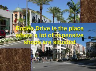 Rodeo Drive is the place where a lot of expensive shops are situated