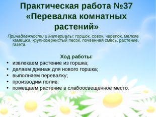 Практическая работа №37 «Перевалка комнатных растений» Принадлежности и мате