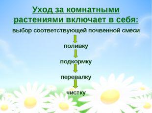 Уход за комнатными растениями включает в себя: выбор соответствующей почвенно