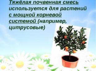 Тяжёлая почвенная смесь используется для растений с мощной корневой системой