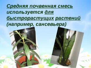 Средняя почвенная смесь используется для быстрорастущих растений (например, с