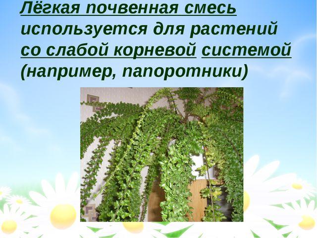 Лёгкая почвенная смесь используется для растений со слабой корневой системой...