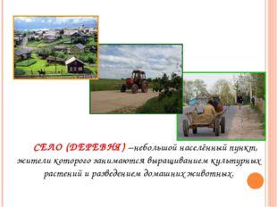 Село СЕЛО (ДЕРЕВНЯ) –небольшой населённый пункт, жители которого занимаются