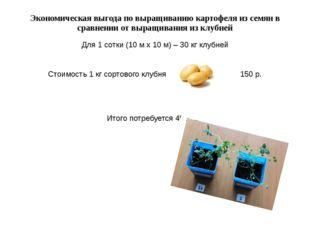 Экономическая выгода по выращиванию картофеля из семян в сравнении от выращив