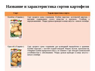 Название и характеристика сортов картофеля Сорт Характеристика сорта Колобок