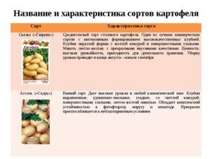 Название и характеристика сортов картофеля Сорт Характеристика сорта Сказка(«