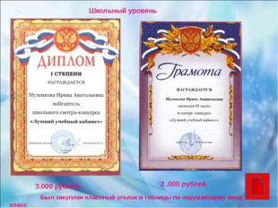 Школьный уровень 2 .000 рублей 3.000 рублей Был закуплен классный уголок и т