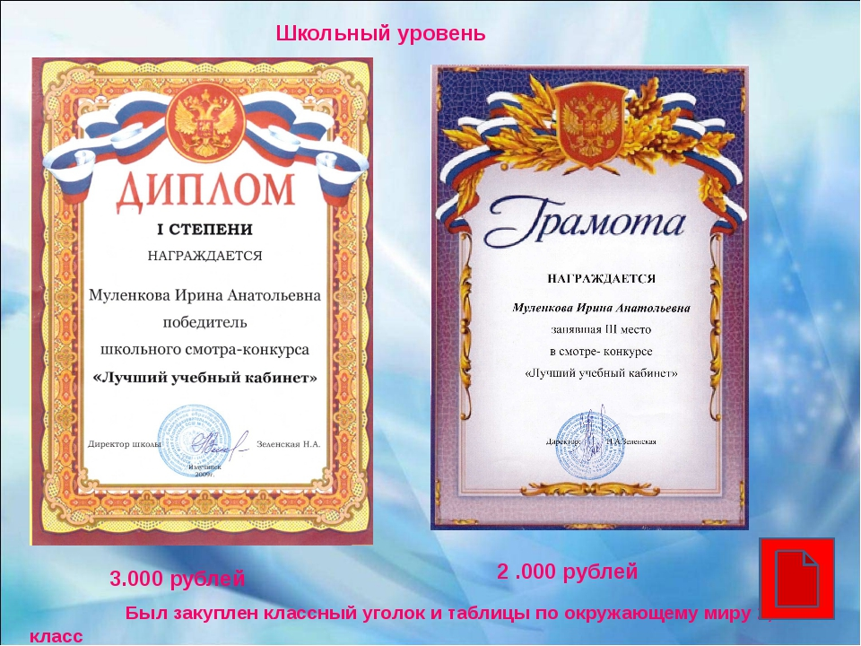 Школьный уровень 2 .000 рублей 3.000 рублей Был закуплен классный уголок и т...