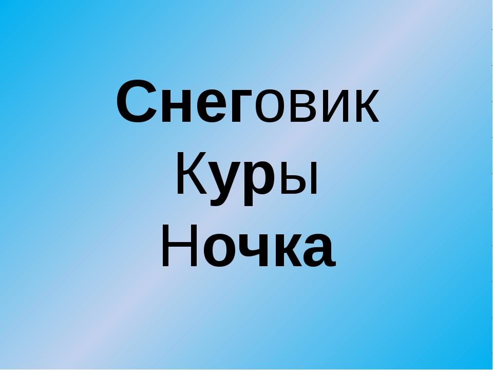 Снеговик Куры Ночка