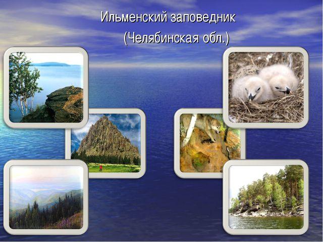 Ильменский заповедник (Челябинская обл.)