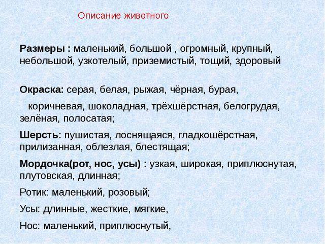 Текст сочинение на казахском про домашних животных тему