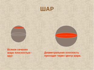 ШАР Всякое сечение шара плоскостью - круг Диаметральная плоскость проходит че
