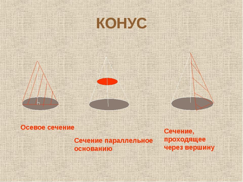 КОНУС Осевое сечение Сечение параллельное основанию Сечение, проходящее через...