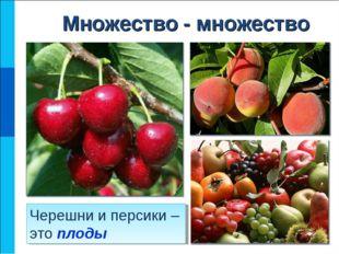 Черешни и персики – это плоды Множество - множество