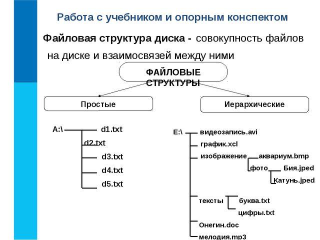 E:\ видеозапись.avi график.xcl изображение аквариум.bmp фото Бия.jped Катунь....