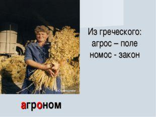 агроном Из греческого: агрос – поле номос - закон