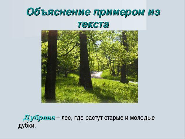 Объяснение примером из текста Дубрава – лес, где растут старые и молодые дубки.