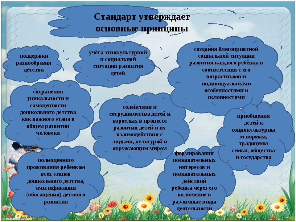 Стандарт утверждает основные принципы сохранения уникальности и самоценности...