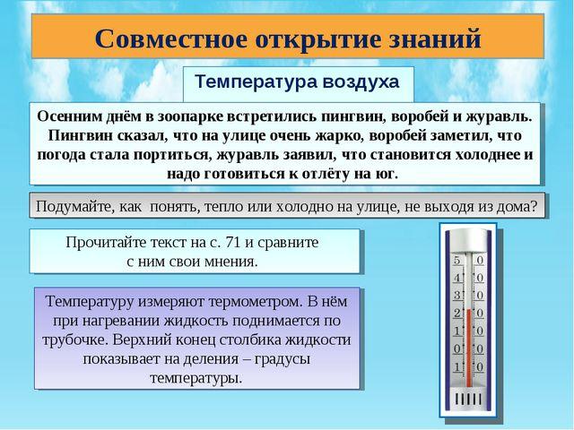 Температура воздуха Совместное открытие знаний Осенним днём в зоопарке встре...