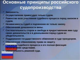Основные принципы российского судопроизводства Законность. Осуществление прав
