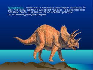Трицератопс – появились в конце эры динозавров, примерно 70 млн. лет назад.