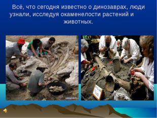 Всё, что сегодня известно о динозаврах, люди узнали, исследуя окаменелости ра