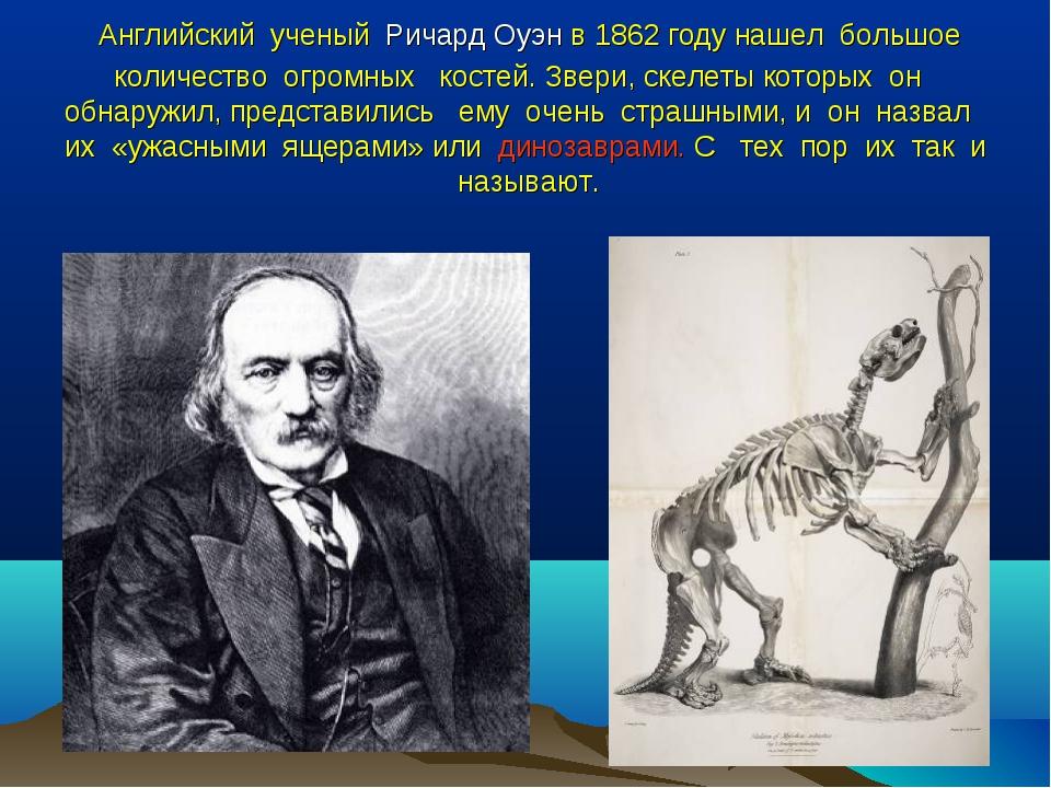 Английский ученый Ричард Оуэн в 1862 году нашел большое количество огромных...