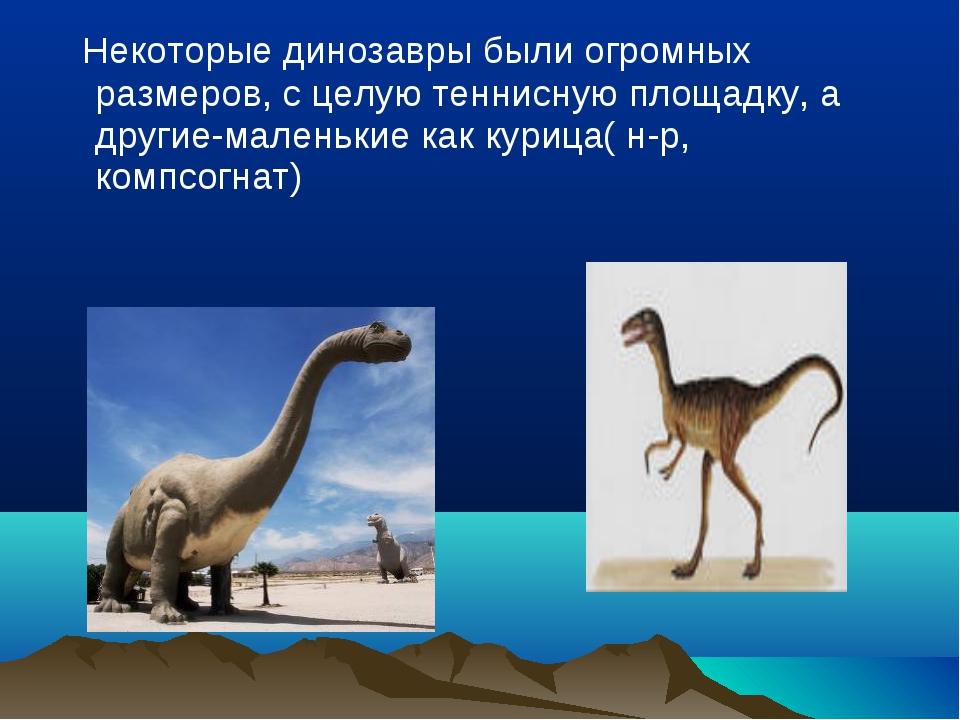 Некоторые динозавры были огромных размеров, с целую теннисную площадку, а др...