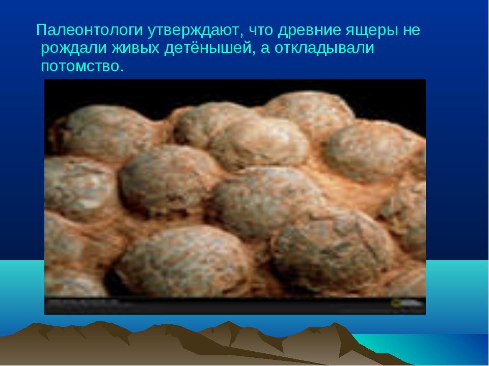 Палеонтологи утверждают, что древние ящеры не рождали живых детёнышей, а отк...