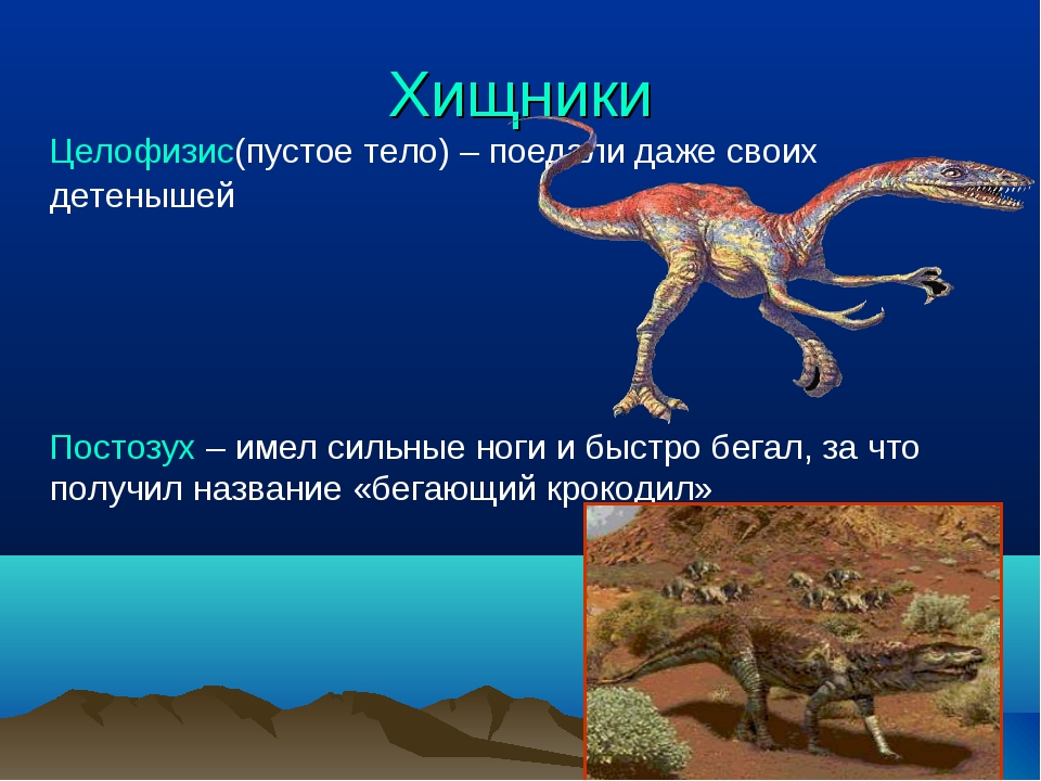 Хищники Целофизис(пустое тело) – поедали даже своих детенышей Постозух – имел...