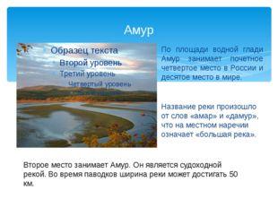 Амур По площади водной глади Амур занимает почетное четвертое место в России