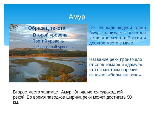 Амур По площади водной глади Амур занимает почетное четвертое место в России...