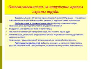 Ответственность за нарушение правил охраны труда. Федеральный закон «Об осн
