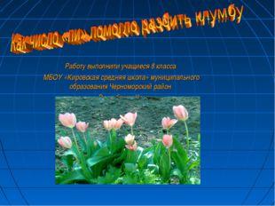 Работу выполнили учащиеся 8 класса МБОУ «Кировская средняя школа» муниципальн
