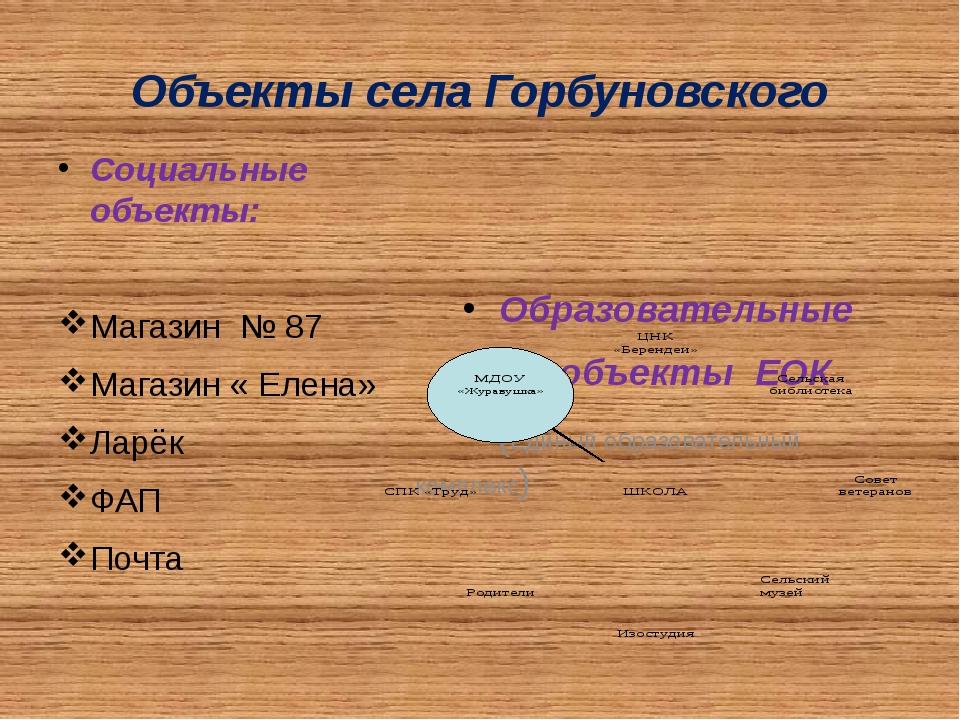 Объекты села Горбуновского Социальные объекты: Магазин № 87 Магазин « Елена»...