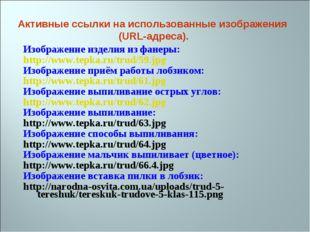 Изображение изделия из фанеры: http://www.tepka.ru/trud/59.jpg Изображение пр