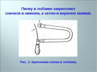 Пилку в лобзике закрепляют сначала в нижнем, а затем в верхнем зажиме. Рис. 3