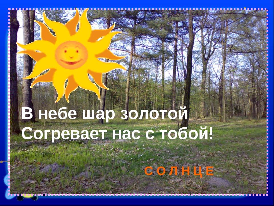 В небе шар золотой Согревает нас с тобой! С О Л Н Ц Е