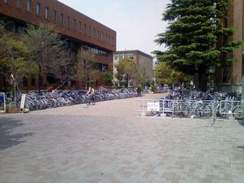 Организованная и стихийная парковка велосипедов в кампусе Киотского Университета.