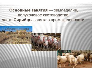 Основныезанятия— земледелие, полукочевое скотоводство, частьСирийцызанята