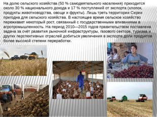 На долю сельского хозяйства (50 % самодеятельного населения) приходится окол