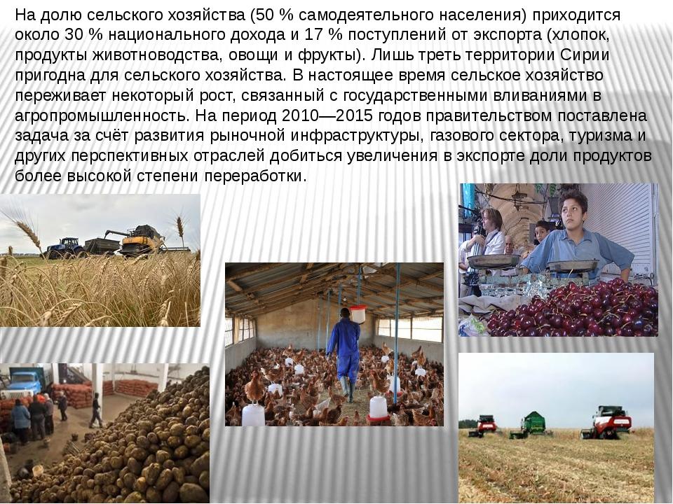 На долю сельского хозяйства (50 % самодеятельного населения) приходится окол...