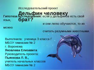 Исследовательский проект Дельфин человеку брат? Гипотеза исследования: если у