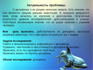 Актуальность проблемы О дельфинах и их разуме написано немало. Есть мнение, ч