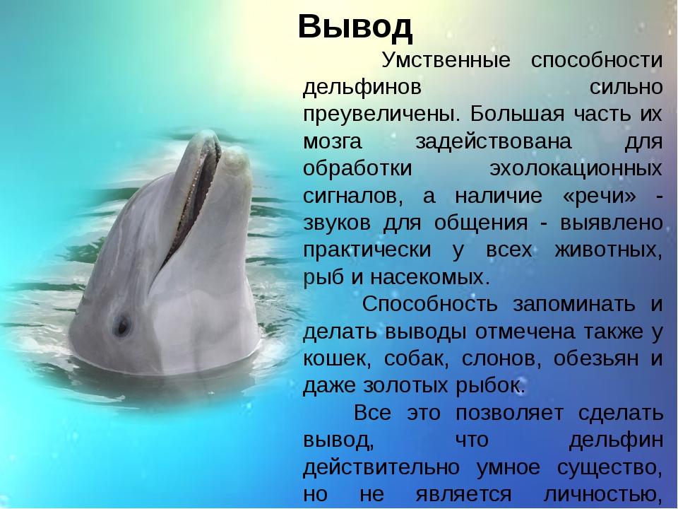 Вывод Умственные способности дельфинов сильно преувеличены. Большая часть их...