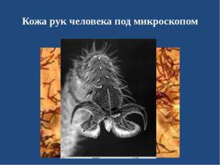 Кожа рук человека под микроскопом