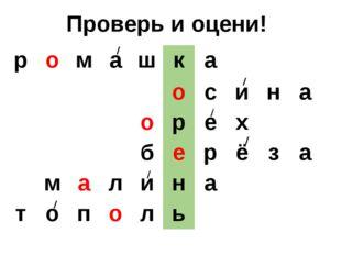 Проверь и оцени! р о м а ш к а о с и н а о р е х б е р ё з а м а л и н а т о