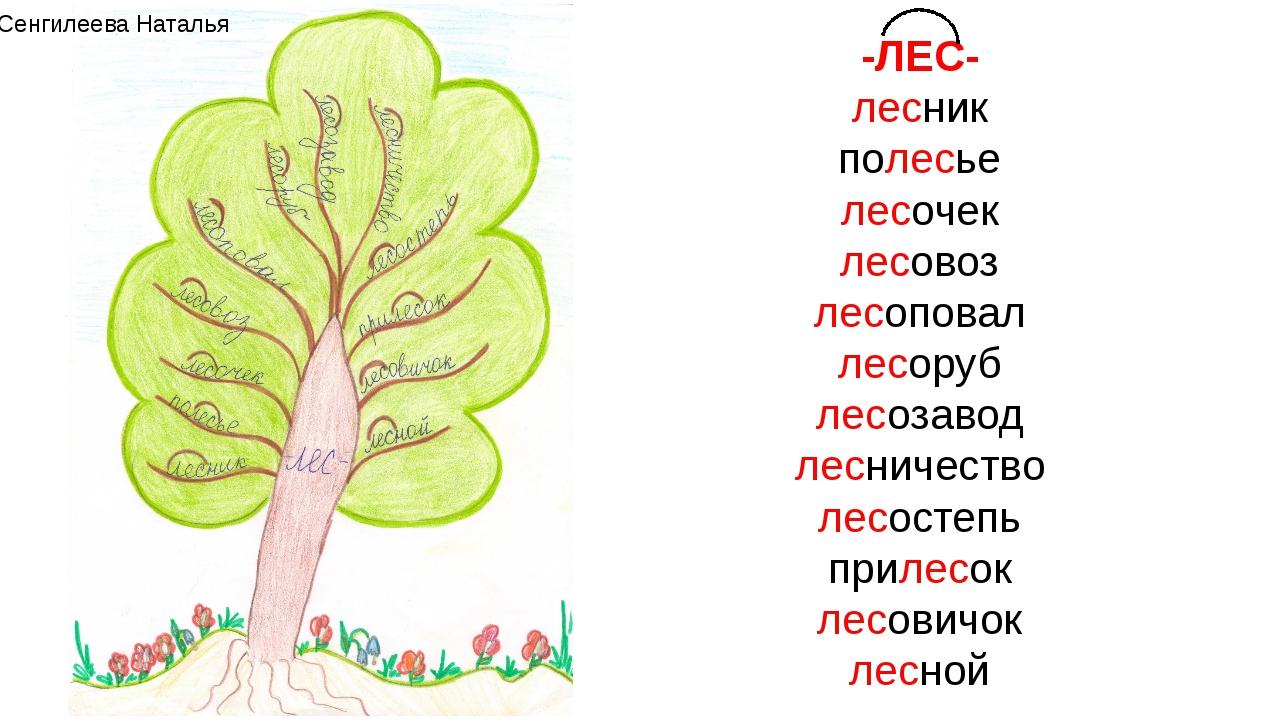 Картинки со словом лес, днем