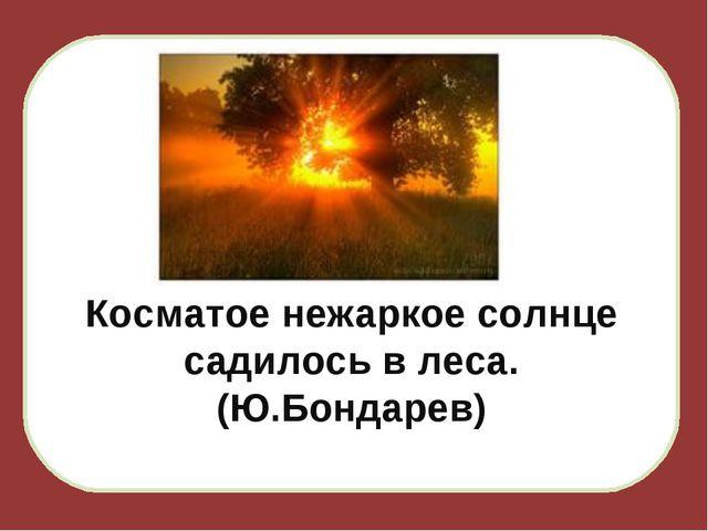 Косматое нежаркое солнце садилось в леса. (Ю.Бондарев)